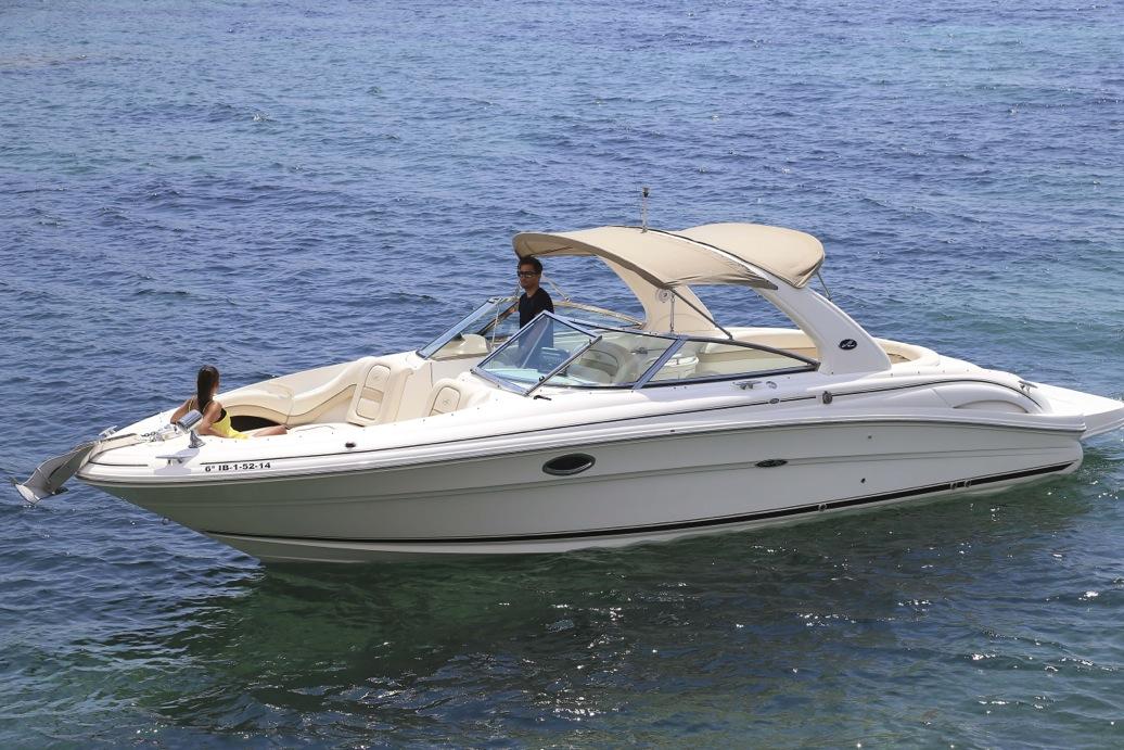 SeaRay290 N1-1